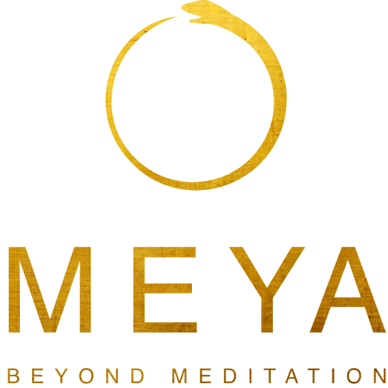 Meya Logo