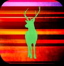 Deer Sleep App Icon