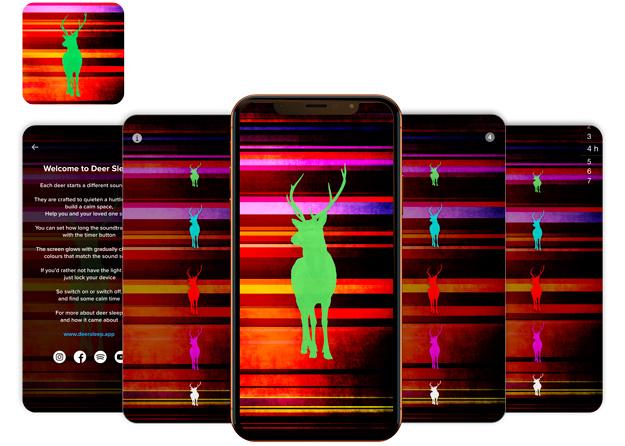 Deer Sleep Feature Image